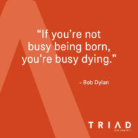 Quote-24-dylan